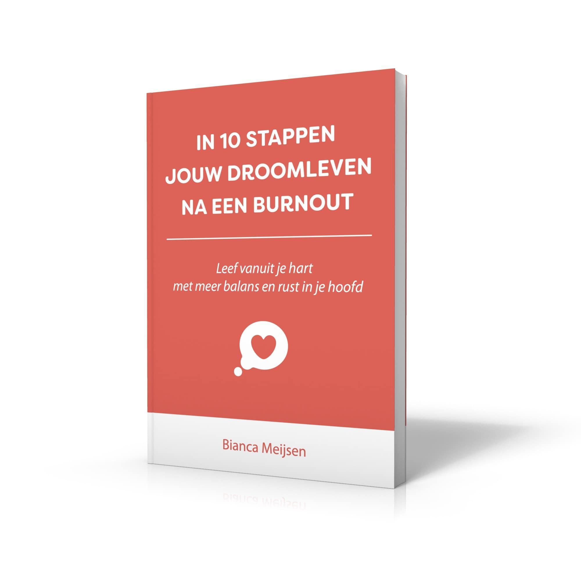 Boek - In 10 stappen jouw droomleven na een burnout