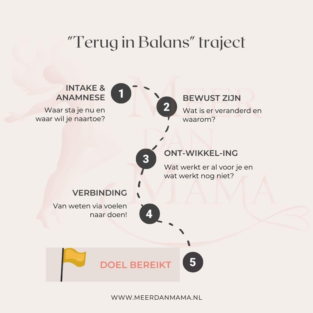 Terug in Balans traject
